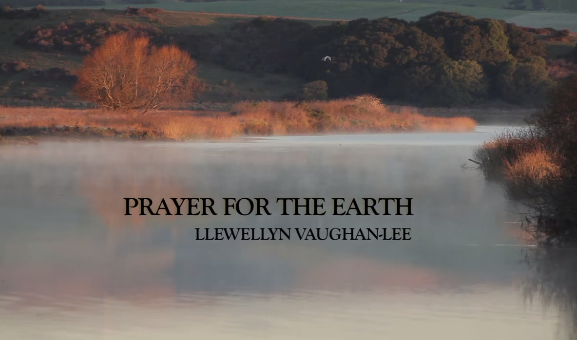 Prayer for the Earth – Llewellyn Vaughan-Lee