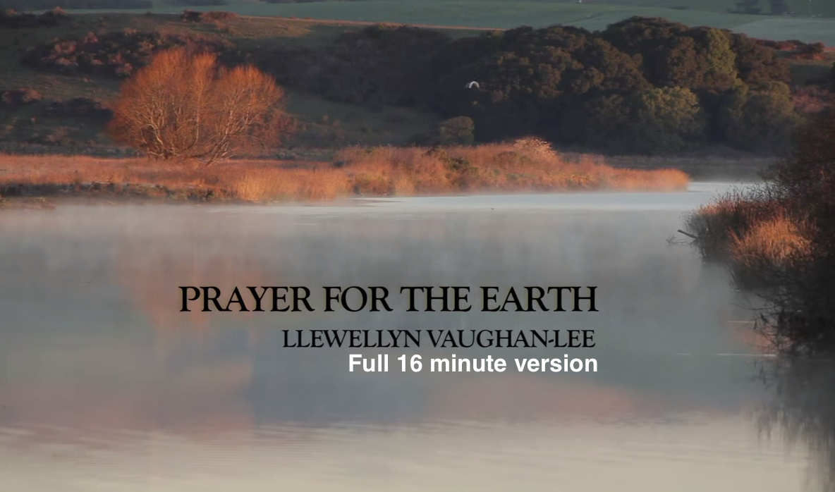 Prayer for the Earth (in full), by Llewellyn Vaughan-Lee